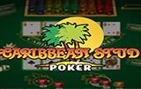 Играть бесплатно Caribbean Stud Professional Series