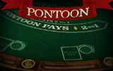 Играть бесплатно Понтун Про Серия